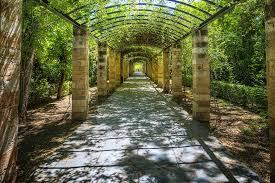 athen garden